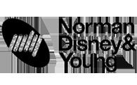 NDY logo