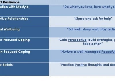6 Pillars of Resilience Model